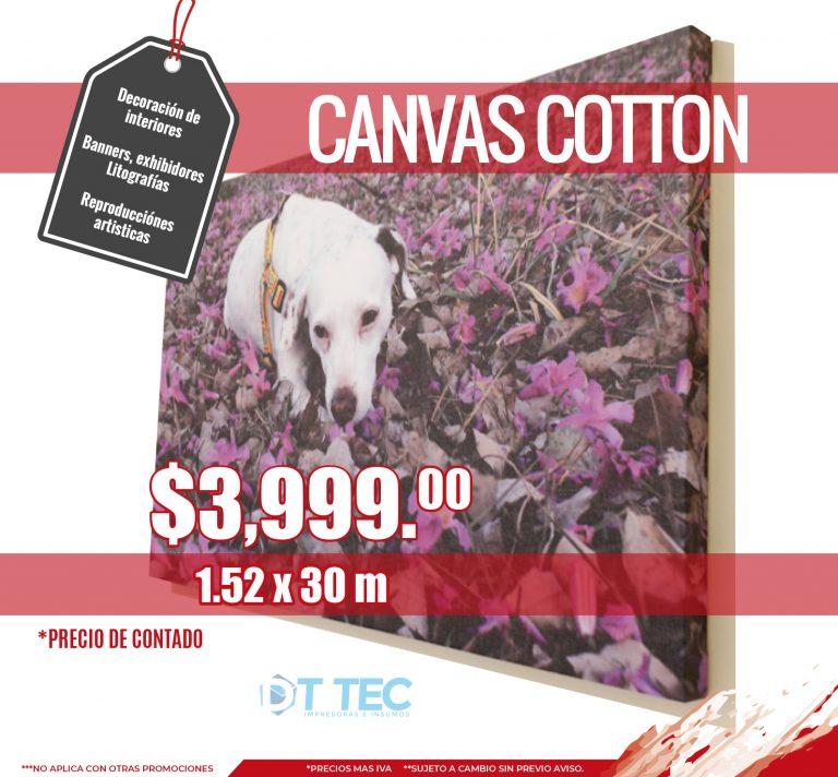 Canvas cotton V8